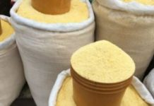 garri processing business