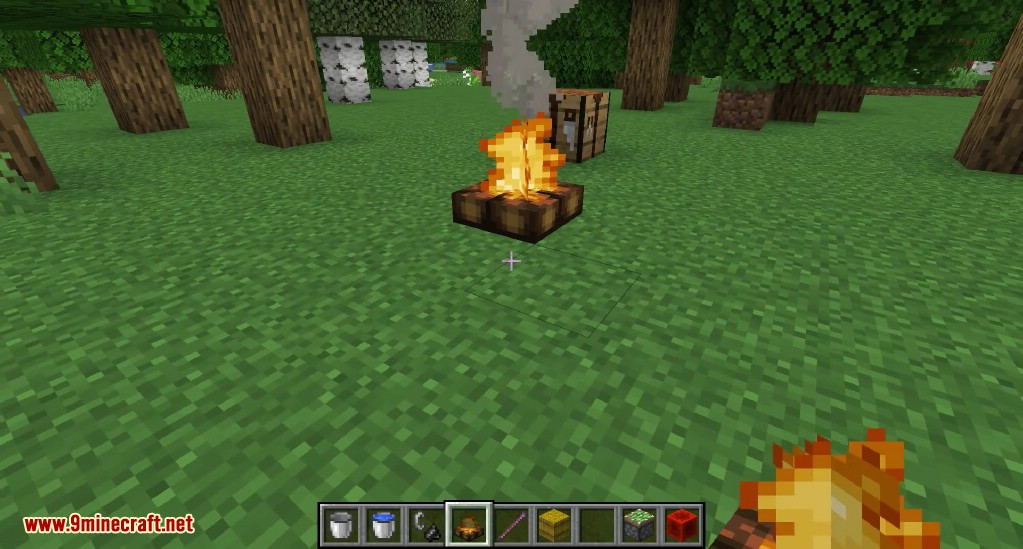 Minecraft 114 Snapshot 19w02a (campfire, Lectern