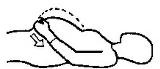 طريقة التنفس البطني