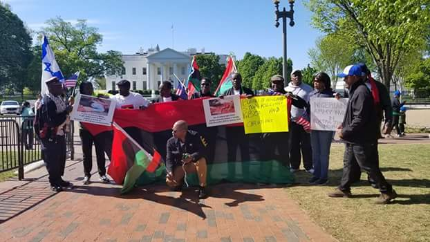 BREAKING!! IPOB Members Shut Down Washington DC, Kick Off