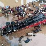 "Trailer loaded with Fulani cows, goats and ""Almajiris"" heading to the South East fell at the Lokoja Bridge killing many"