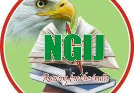 Nigeria Guild of Investigative Journalists elects new executives