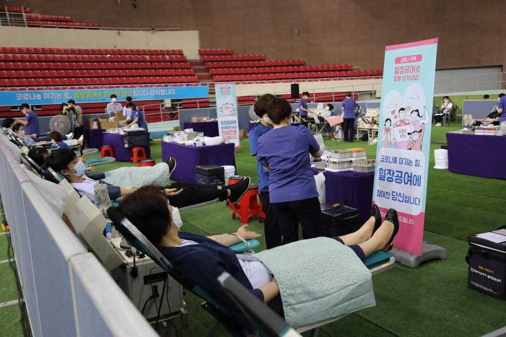 donating plasma in Daegu (3)