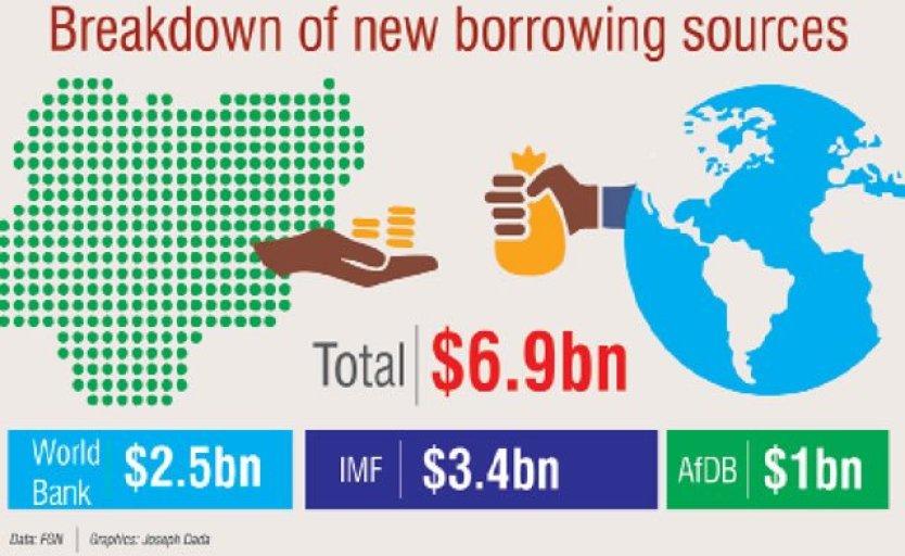 Breakdown of Nigeria's new borrowing plan according to Punch