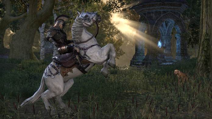 Elder Scrolls 6 fans Bethesda
