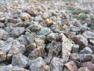 nex-rocks