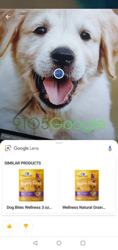 new-google-lens-rolling-out-4