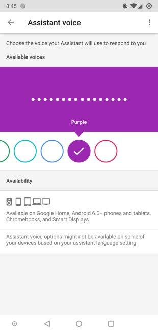 google-app-8-8-voice-color-name-1