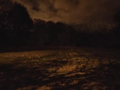 Darkened field - Nightscape