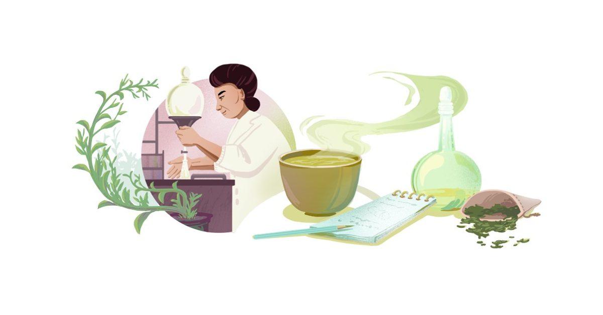 Google Doodle honors Michiyo Tsujimura, chemist and green tea researcher thumbnail