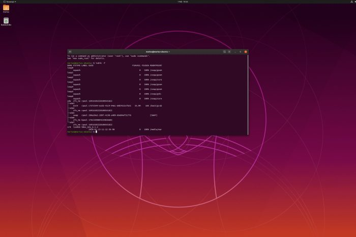 How to Install Ubuntu 19.10 with ZFS as Root File System