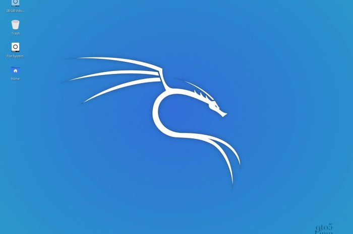 Kali Linux 2020.1a Installation ISOs Released to Fix Installer Bug