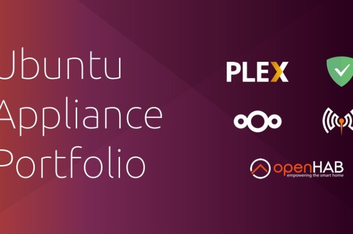 Canonical Launches the Ubuntu Appliance Initiative for Raspberry Pi and PC