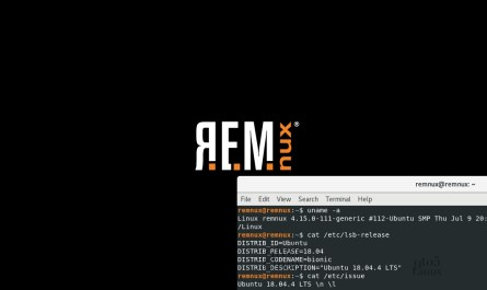 REMnux 7.0