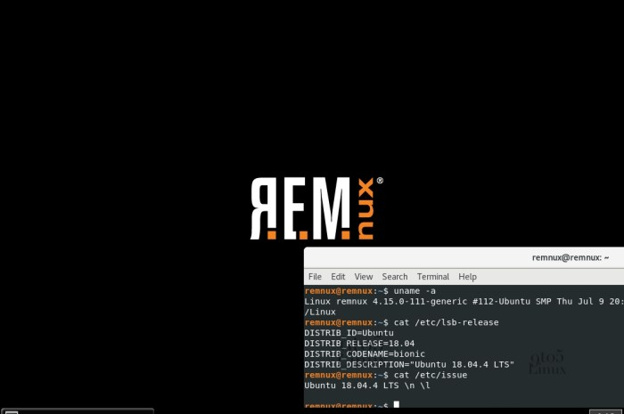 REMnux 7.0 Linux Distro for Malware Analysis Released in Celebration of 10th Anniversary