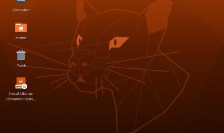 Ubuntu Cinnamon Remix 20.04.1 LTS
