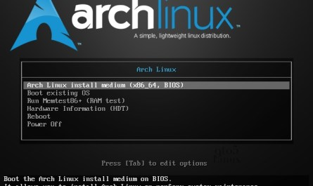 Arch Linux 5.8