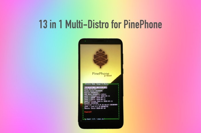 This PinePhone Multi-Distro Image Lets You Run 13 Distros on the Linux Phone