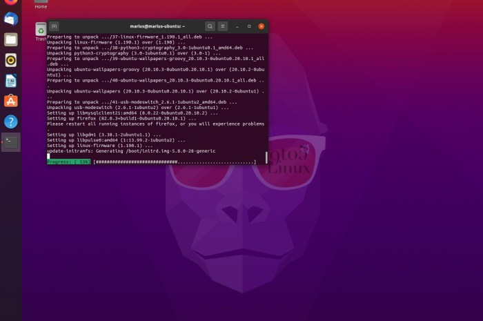 Ubuntu 20.10 Gets Its First Linux Kernel Security Patch, Update Now