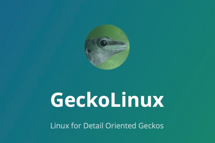 openSUSE-Based GeckoLinux Has a New Release with Bluetooth Improvements, Latest Updates