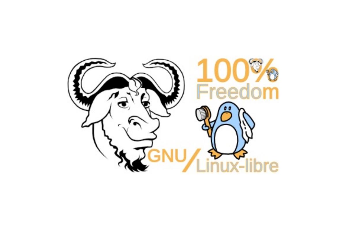 GNU Linux-Libre 5.10