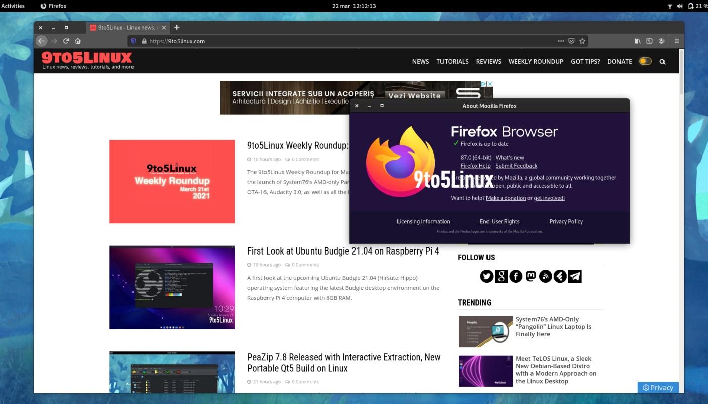 Mozilla Firefox 87