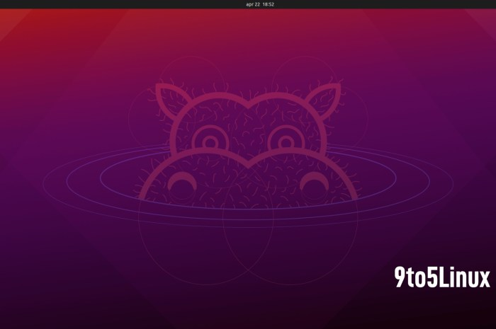 Ubuntu 21.04 (Hirsute Hippo) Is Now Available for Download, This Is What's New