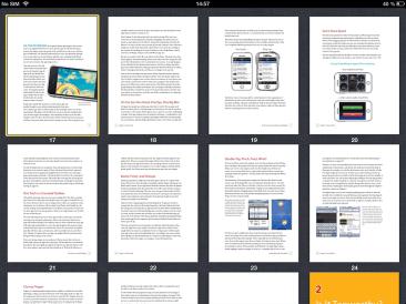 pdf-overview-ipad-mini
