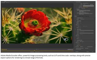 Adobe-CC-update-06