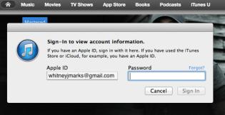 return password prompt