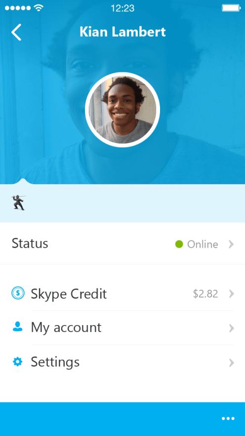 Skype_5.0_iPhone_profile