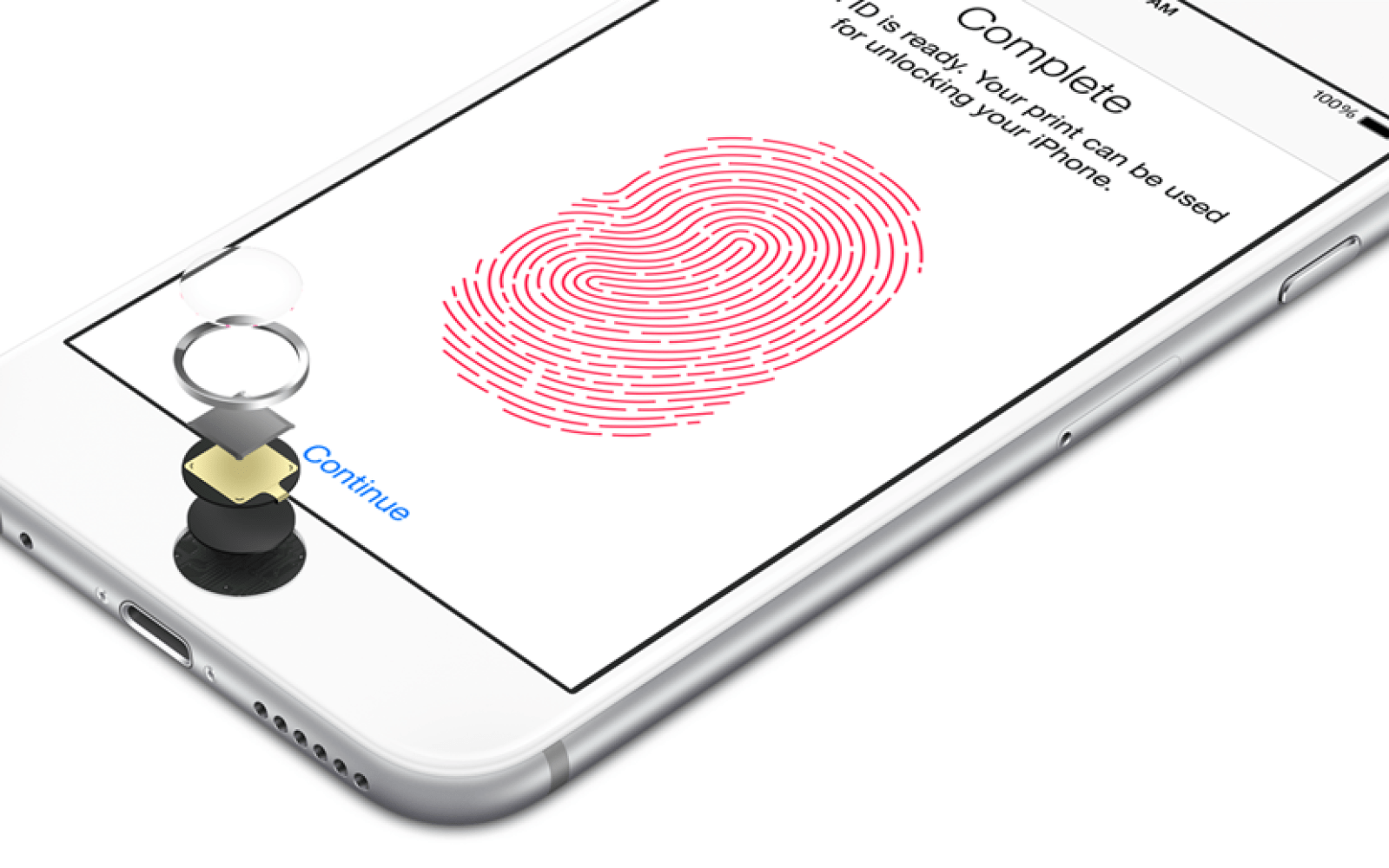 U.S. court rules that phone passcodes are protected by the 5th Amendment, but fingerprints aren't