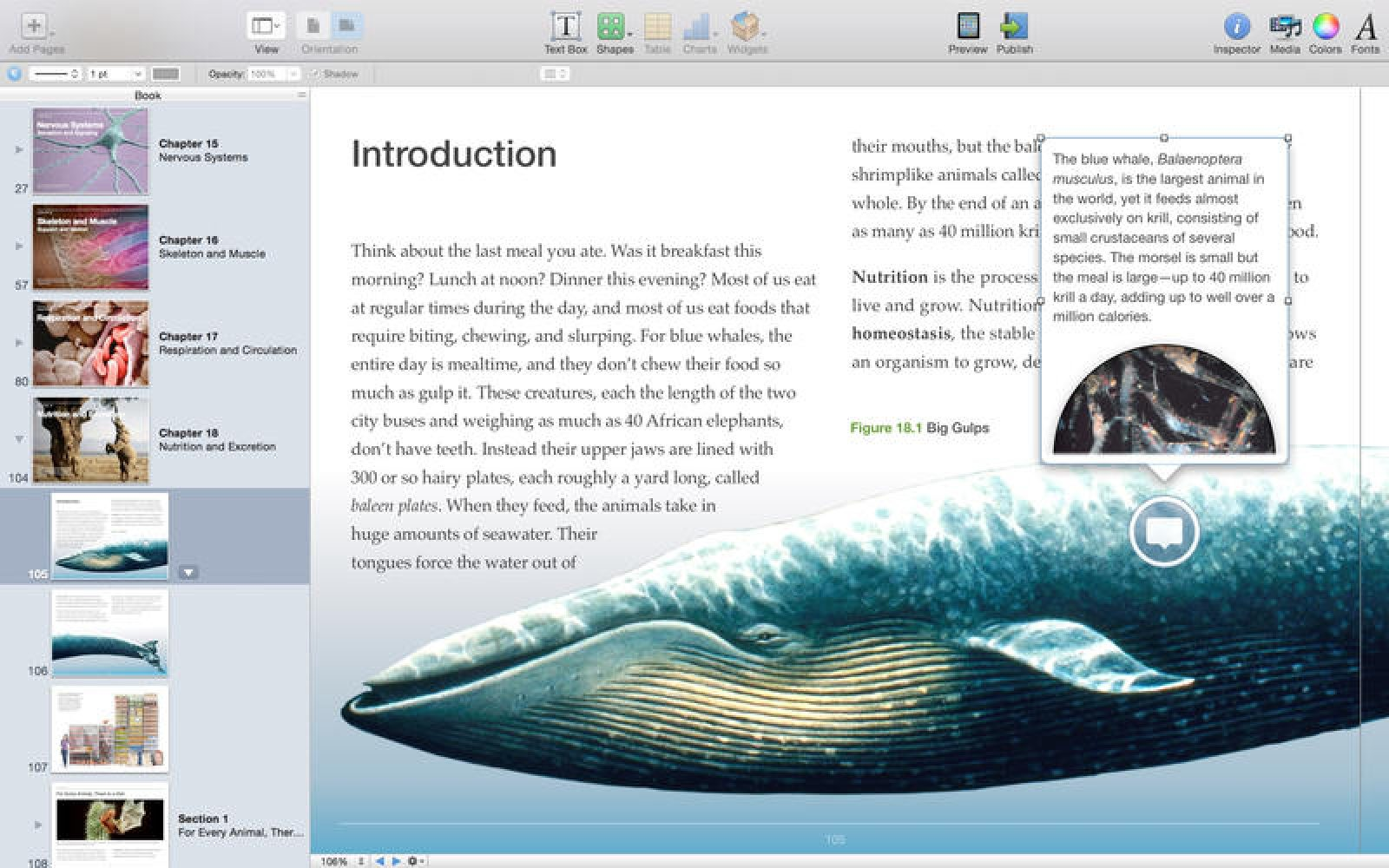 iBooks Author for Mac updated with iPhone textbook support, new ePub ...