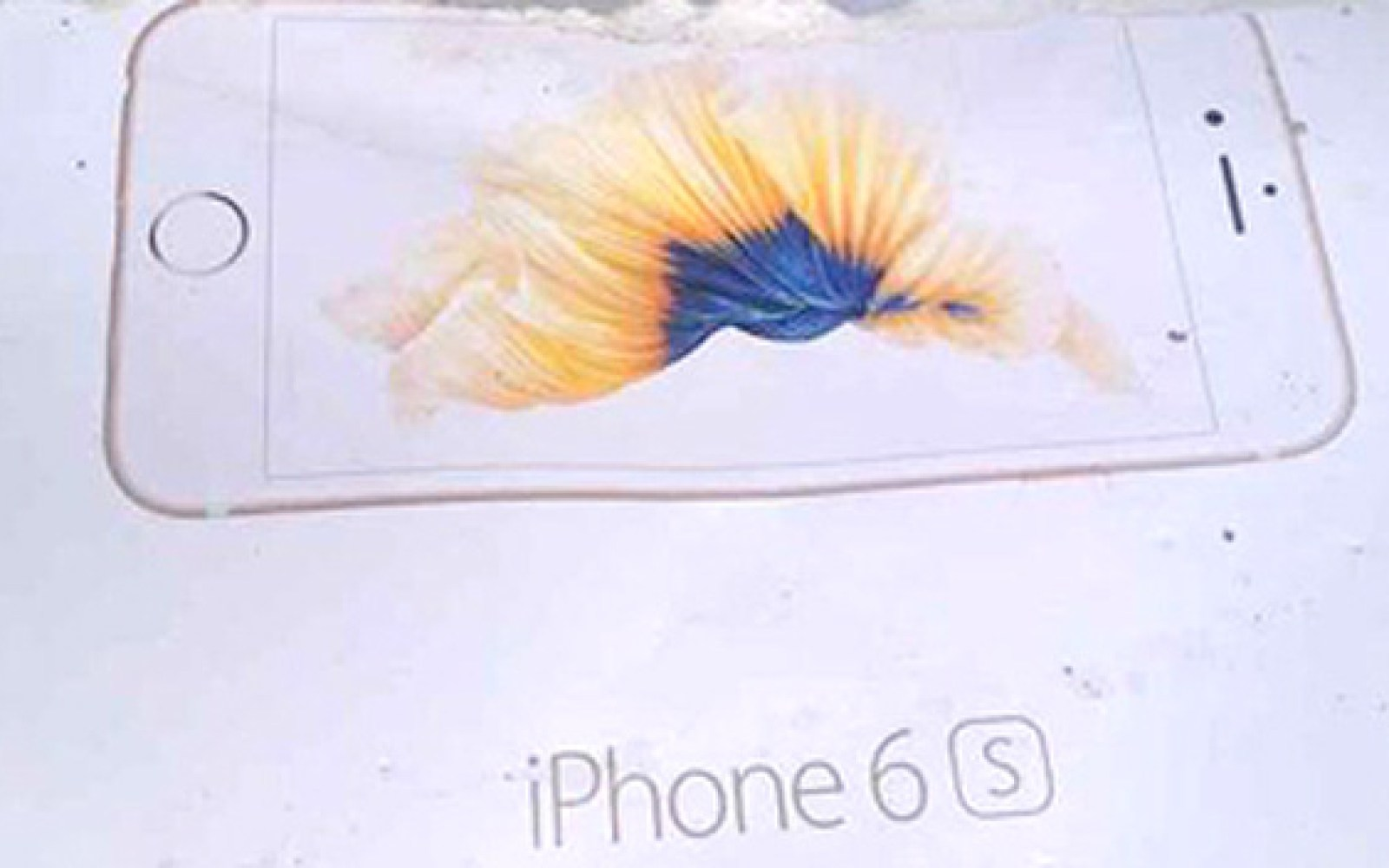 Leaked iPhone 6s box again hints Motion backgrounds coming to new iPhones