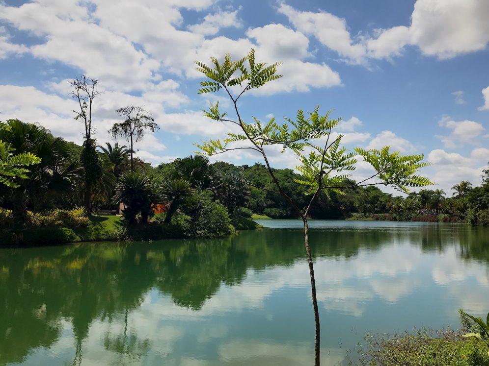 Lake without Aukey lens