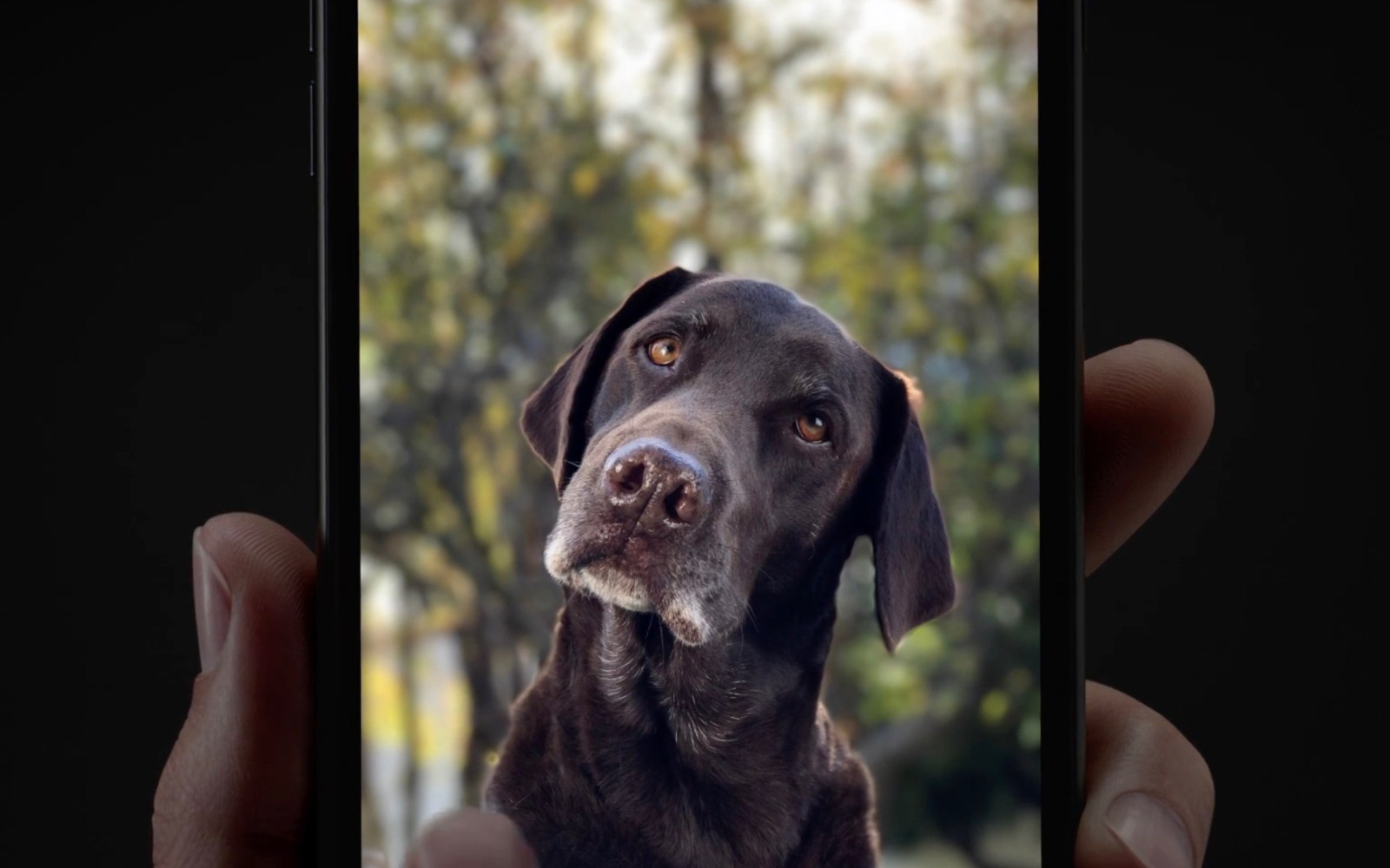 Apple promoting Portrait Mode Depth Effect in latest iPhone 7 Plus video ads [Update]