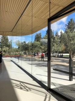 Apple Park 3 6