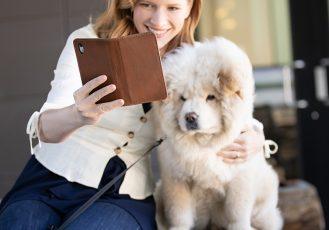 bella-iphone-xc-case-dog