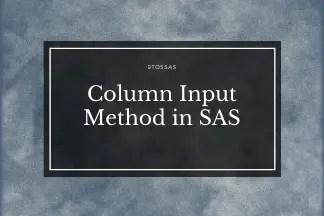 column input sas