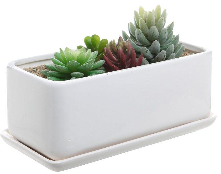modern minimalist white ceramic planter