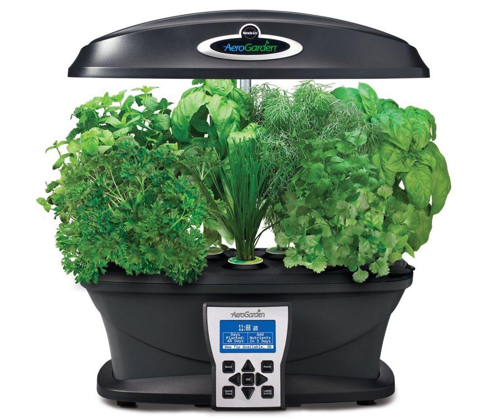 Grow Fresh Herbs Veggies And With Indoor Aerogarden Herb Seed Kit 48