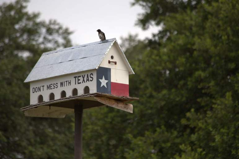 Even bird houses are big in Texas