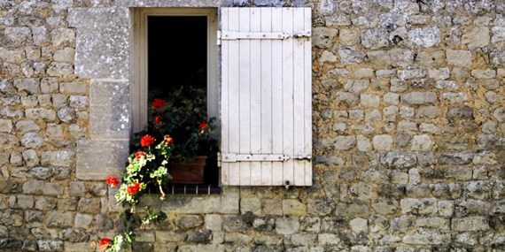 Flowers in Normandy © Michael Raymond 2016