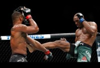 Top 30 Knockouts in the History of UFC MMA