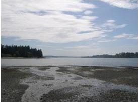 Pleasant Beach Watershed