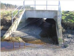 Fish culvert under Point White Drive