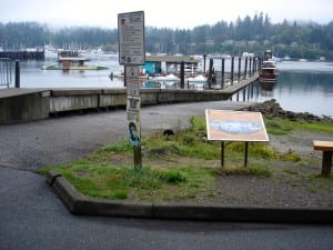 City Dock is at the foot of Waterfront Park, and is next to the launch ramp for trailered boats
