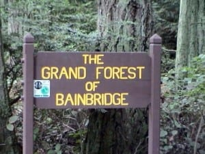 The Grand Forest - one of the signature forested parks of Bainbridge - is maintained by the Parks District