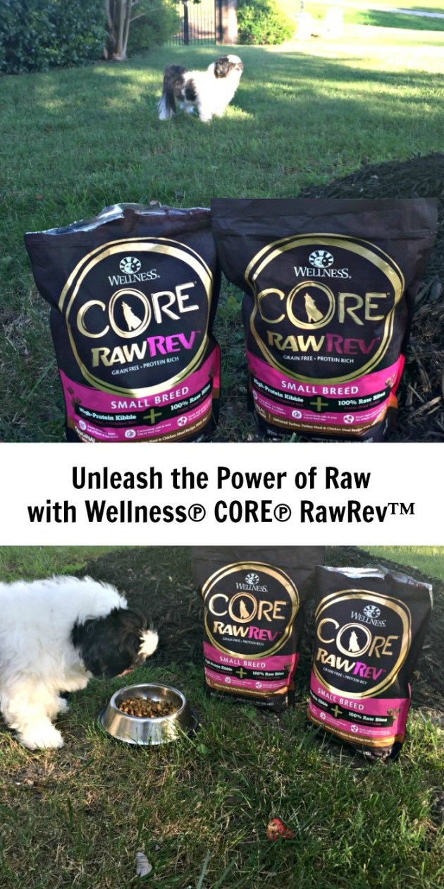 Unleash the power of raw with Wellness Core RawRev from PetSmart