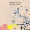 Damien Kingston Trio: Yellow Lights